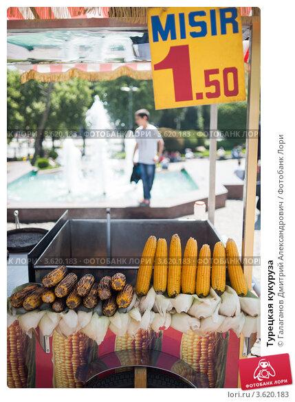 фото рекламы кукуруза в турцию крайней мере белые