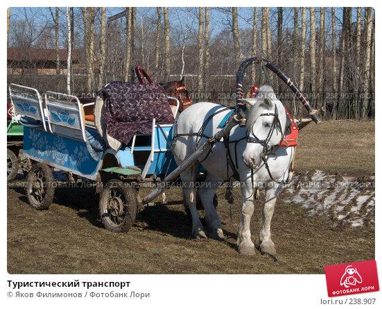 Туристический транспорт, фото № 238907, снято 22 января 2017 г. (c) Яков Филимонов / Фотобанк Лори