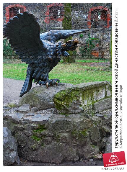 Турул,степной орел,символ венгерской династии Арпадовичей.Ужгородский замок,Украина,Закарпатье, фото № 237355, снято 24 марта 2008 г. (c) Мирослава Безман / Фотобанк Лори