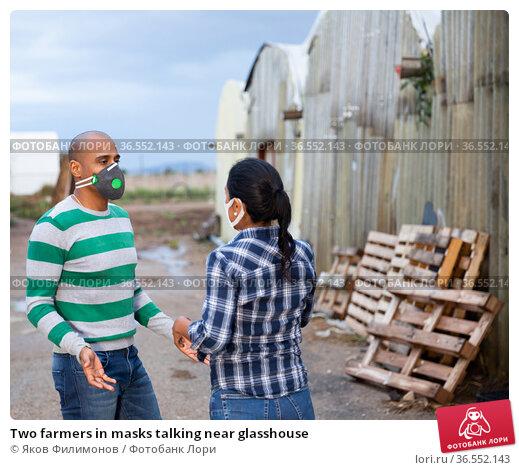 Two farmers in masks talking near glasshouse. Стоковое фото, фотограф Яков Филимонов / Фотобанк Лори