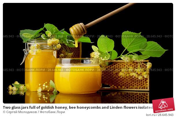 Two glass jars full of goldish honey, bee honeycombs and Linden flowers isolated on black. Стоковое фото, фотограф Сергей Молодиков / Фотобанк Лори