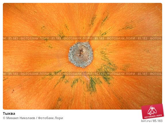 Купить «Тыква», фото № 85183, снято 9 сентября 2007 г. (c) Михаил Николаев / Фотобанк Лори
