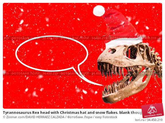 Tyrannosaurus Rex head with Christmas hat and snow flakes. blank thought... Стоковое фото, фотограф Zoonar.com/DAVID HERRAEZ CALZADA / easy Fotostock / Фотобанк Лори