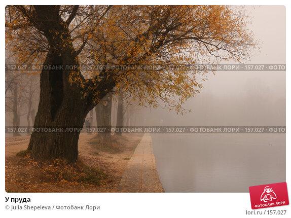 У пруда, фото № 157027, снято 30 октября 2007 г. (c) Julia Shepeleva / Фотобанк Лори