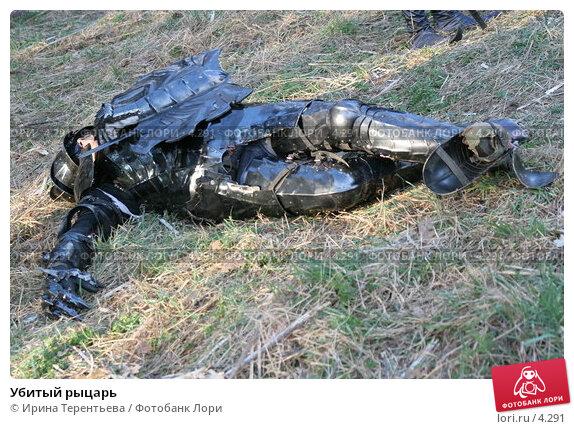 Убитый рыцарь, эксклюзивное фото № 4291, снято 8 мая 2006 г. (c) Ирина Терентьева / Фотобанк Лори