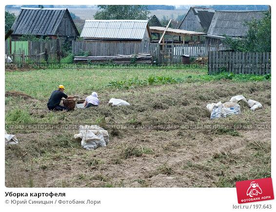 Уборка картофеля, фото № 197643, снято 26 августа 2007 г. (c) Юрий Синицын / Фотобанк Лори