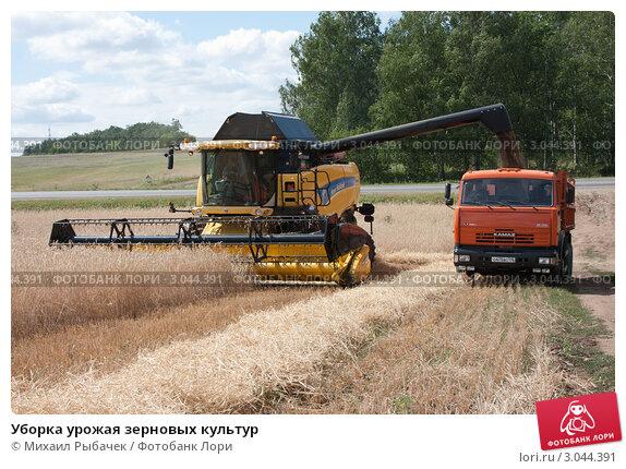 Купить «Уборка урожая зерновых культур», фото № 3044391, снято 3 августа 2011 г. (c) Михаил Рыбачек / Фотобанк Лори