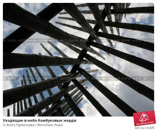 Уходящие в небо бамбуковые жерди, фото № 4475, снято 21 мая 2006 г. (c) Агата Терентьева / Фотобанк Лори