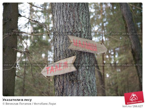 Указатели в лесу, фото № 266627, снято 1 января 2008 г. (c) Вячеслав Потапов / Фотобанк Лори