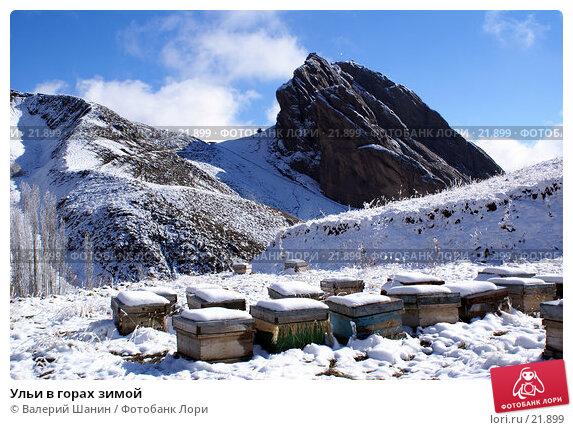 Ульи в горах зимой, фото № 21899, снято 21 ноября 2006 г. (c) Валерий Шанин / Фотобанк Лори