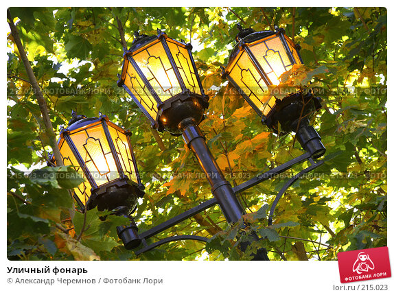 Уличный фонарь, фото № 215023, снято 4 октября 2007 г. (c) Александр Черемнов / Фотобанк Лори