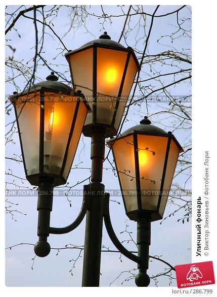 Купить «Уличный фонарь», фото № 286799, снято 29 апреля 2008 г. (c) Виктор Зиновьев / Фотобанк Лори