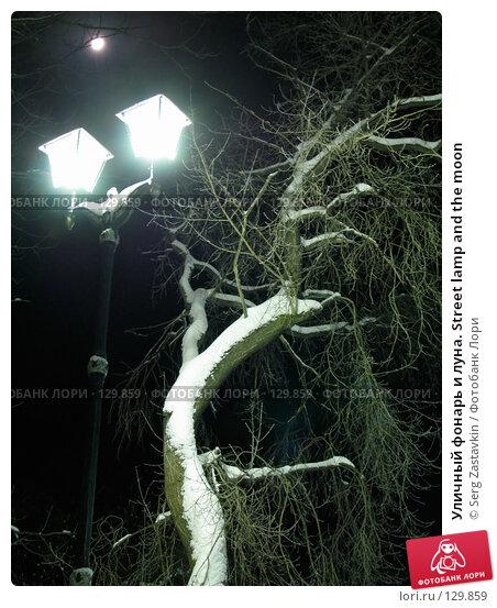 Уличный фонарь и луна. Street lamp and the moon, фото № 129859, снято 22 декабря 2004 г. (c) Serg Zastavkin / Фотобанк Лори