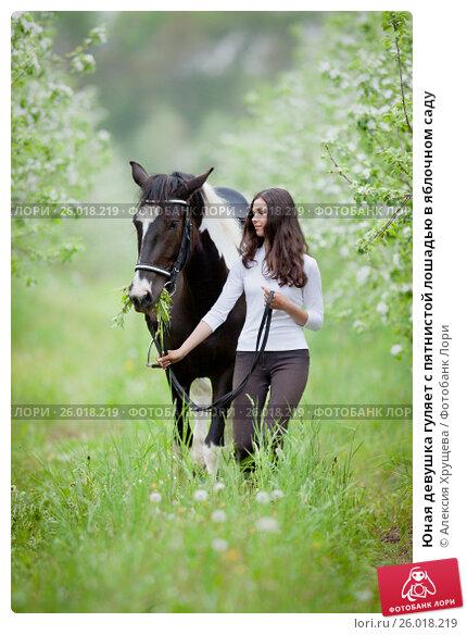 Юная девушка гуляет с пятнистой лошадью в яблочном саду, фото № 26018219, снято 23 июня 2017 г. (c) Melory / Фотобанк Лори