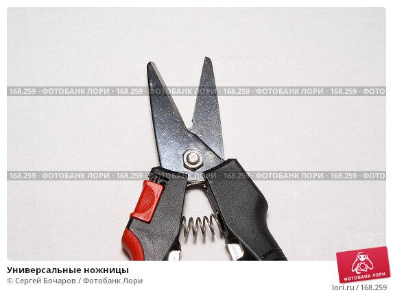 Универсальные ножницы, фото № 168259, снято 6 января 2008 г. (c) Сергей Бочаров / Фотобанк Лори