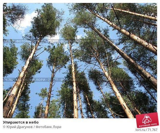 Упираются в небо, фото № 71767, снято 18 июля 2007 г. (c) Юрий Драгунов / Фотобанк Лори