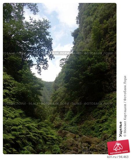 Ущелье, эксклюзивное фото № 94463, снято 2 августа 2007 г. (c) Михаил Карташов / Фотобанк Лори