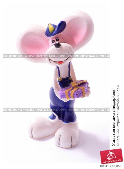 Ушастая мышка с подарком, фото № 46859, снято 21 мая 2007 г. (c) Евгений Батраков / Фотобанк Лори