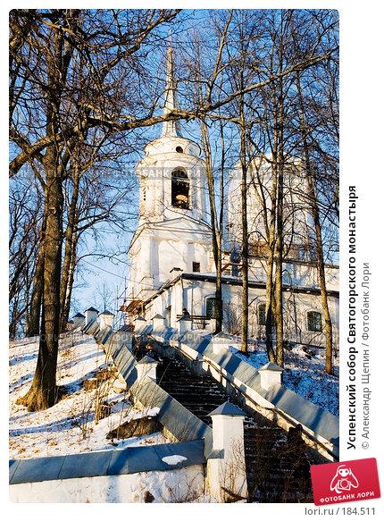 Купить «Успенский собор Святогорского монастыря», эксклюзивное фото № 184511, снято 5 января 2008 г. (c) Александр Щепин / Фотобанк Лори