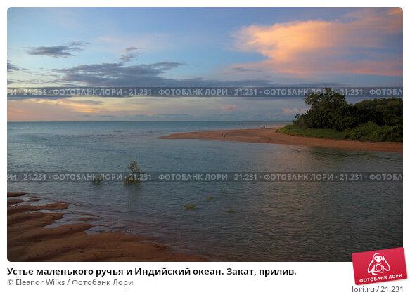 Устье маленького ручья и Индийский океан. Закат, прилив., фото № 21231, снято 22 марта 2007 г. (c) Eleanor Wilks / Фотобанк Лори