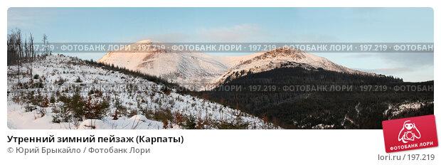 Утренний зимний пейзаж (Карпаты), фото № 197219, снято 29 мая 2017 г. (c) Юрий Брыкайло / Фотобанк Лори