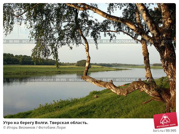 Утро на берегу Волги. Тверская область., фото № 89995, снято 28 мая 2007 г. (c) Игорь Веснинов / Фотобанк Лори