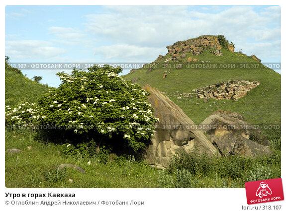 Утро в горах Кавказа, фото № 318107, снято 12 июня 2004 г. (c) Оглоблин Андрей Николаевич / Фотобанк Лори