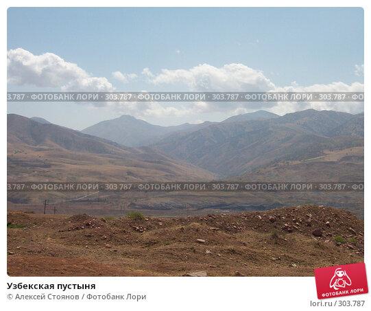 Узбекская пустыня, фото № 303787, снято 1 августа 2005 г. (c) Алексей Стоянов / Фотобанк Лори