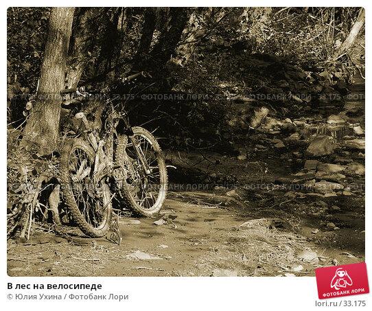 Купить «В лес на велосипеде», фото № 33175, снято 1 мая 2006 г. (c) Юлия Ухина / Фотобанк Лори