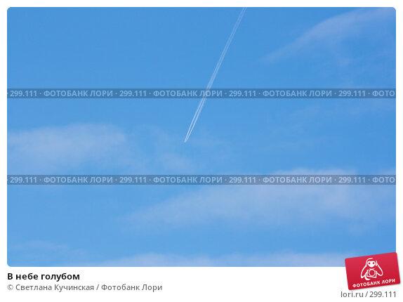 В небе голубом, фото № 299111, снято 9 марта 2008 г. (c) Светлана Кучинская / Фотобанк Лори