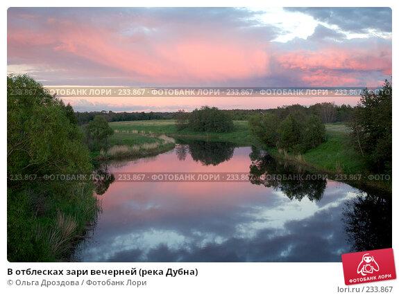 В отблесках зари вечерней (река Дубна), фото № 233867, снято 16 июня 2004 г. (c) Ольга Дроздова / Фотобанк Лори