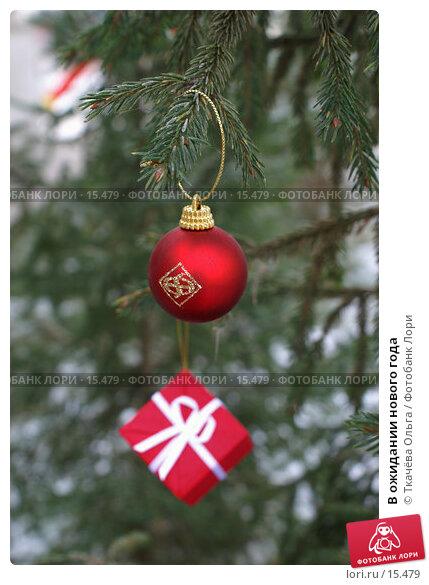 В ожидании нового года, фото № 15479, снято 21 декабря 2006 г. (c) Ткачёва Ольга / Фотобанк Лори