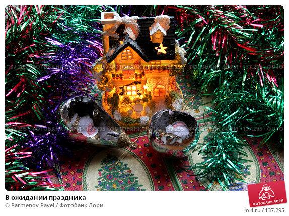 В ожидании праздника, фото № 137295, снято 4 декабря 2007 г. (c) Parmenov Pavel / Фотобанк Лори
