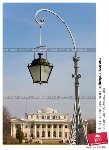 В парке. Фонарь на фоне Дворца Елагина, фото № 257071, снято 5 апреля 2008 г. (c) Argument / Фотобанк Лори