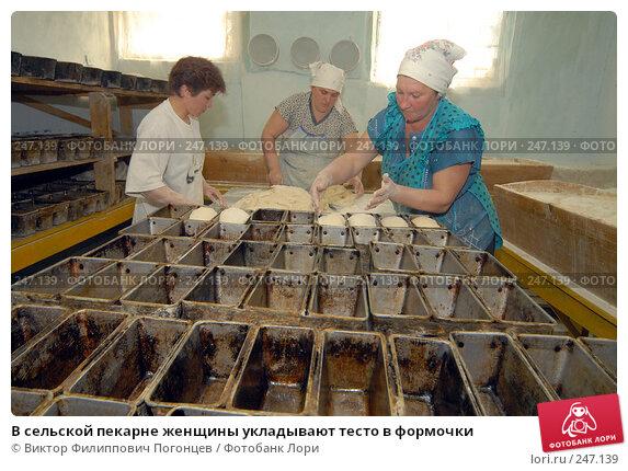 Купить «В сельской пекарне женщины укладывают тесто в формочки», фото № 247139, снято 6 апреля 2006 г. (c) Виктор Филиппович Погонцев / Фотобанк Лори