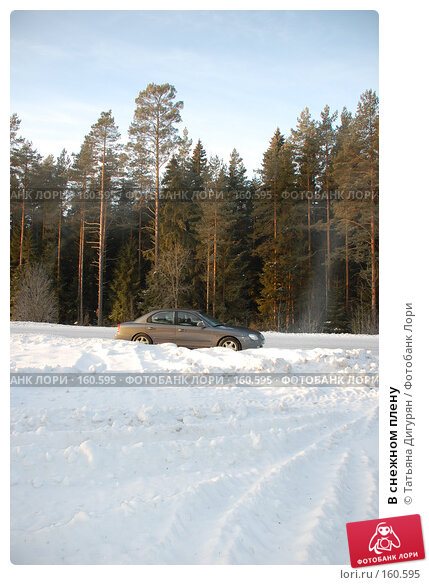 В снежном плену, фото № 160595, снято 23 декабря 2007 г. (c) Татьяна Дигурян / Фотобанк Лори