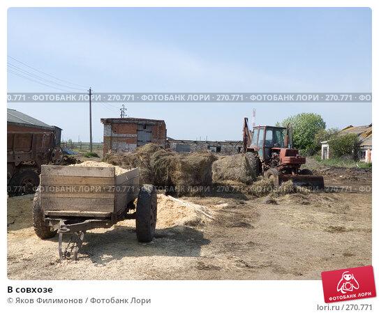 В совхозе, эксклюзивное фото № 270771, снято 1 мая 2008 г. (c) Яков Филимонов / Фотобанк Лори
