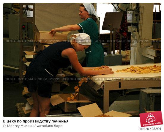 В цеху по производству печенья, фото № 28991, снято 19 июля 2006 г. (c) 1Andrey Милкин / Фотобанк Лори