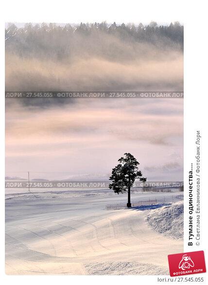 Купить «В тумане одиночества....», фото № 27545055, снято 1 февраля 2018 г. (c) Светлана Евланникова / Фотобанк Лори