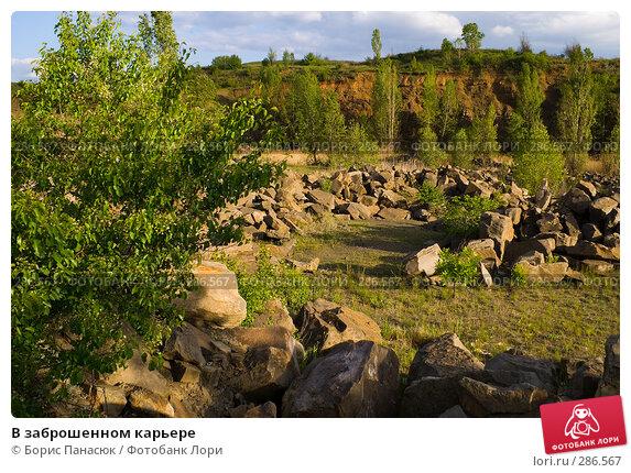 В заброшенном карьере, фото № 286567, снято 8 мая 2008 г. (c) Борис Панасюк / Фотобанк Лори
