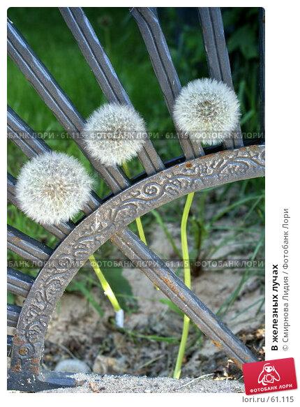 В железных лучах, фото № 61115, снято 26 мая 2007 г. (c) Смирнова Лидия / Фотобанк Лори