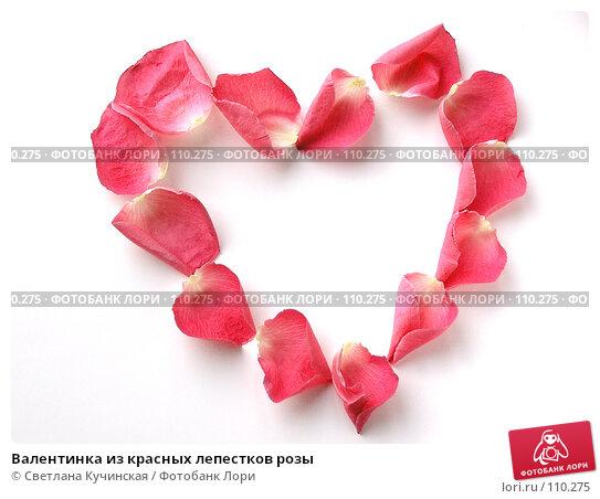 Валентинка из красных лепестков розы, фото № 110275, снято 18 января 2017 г. (c) Светлана Кучинская / Фотобанк Лори