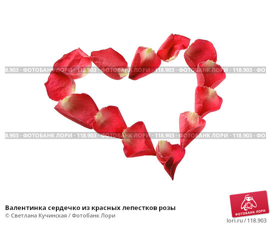 Валентинка сердечко из красных лепестков розы, фото № 118903, снято 26 июля 2017 г. (c) Светлана Кучинская / Фотобанк Лори