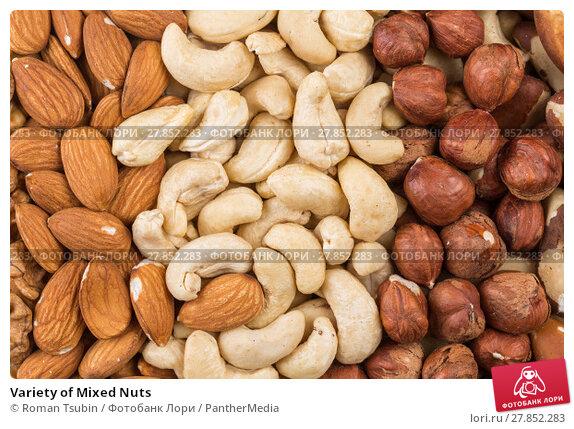 Купить «Variety of Mixed Nuts», фото № 27852283, снято 18 февраля 2019 г. (c) PantherMedia / Фотобанк Лори