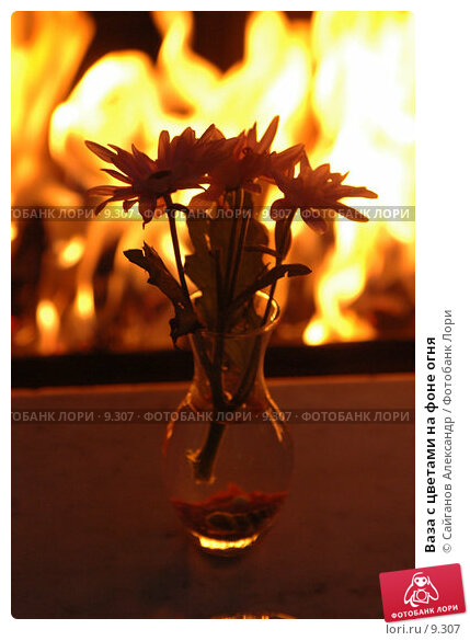 Купить «Ваза с цветами на фоне огня», фото № 9307, снято 4 января 2005 г. (c) Сайганов Александр / Фотобанк Лори
