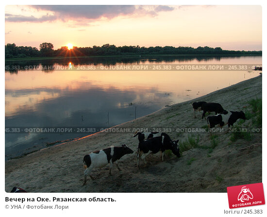 Купить «Вечер на Оке. Рязанская область.», фото № 245383, снято 4 июля 2007 г. (c) УНА / Фотобанк Лори