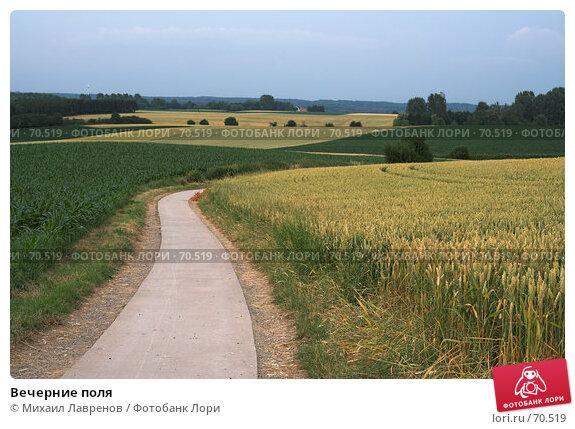 Купить «Вечерние поля», фото № 70519, снято 5 июля 2006 г. (c) Михаил Лавренов / Фотобанк Лори