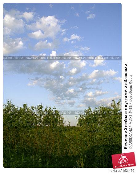 Вечерний пейзаж с кустами и облаками, фото № 162479, снято 20 июня 2006 г. (c) АЛЕКСАНДР МИХЕИЧЕВ / Фотобанк Лори