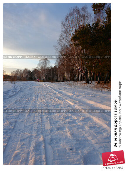 Вечерняя дорога зимой, эксклюзивное фото № 42987, снято 23 февраля 2017 г. (c) Александр Тараканов / Фотобанк Лори