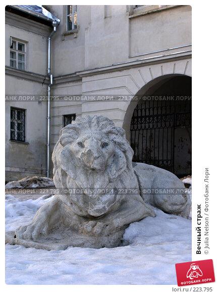 Купить «Вечный страж», фото № 223795, снято 26 февраля 2008 г. (c) Julia Nelson / Фотобанк Лори